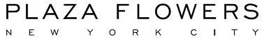 plaza.logo