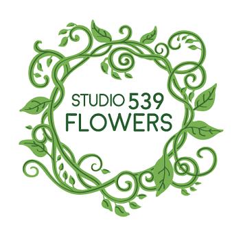 studio 539