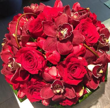 muscari Valentines