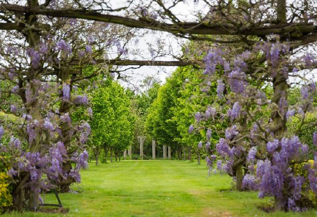 the gardens.uk