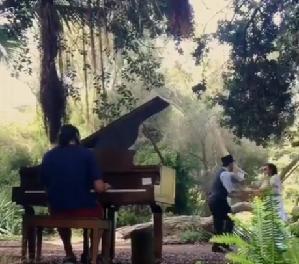 flower piano.2016