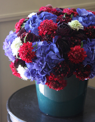 fleurs tremelo. red. blue.