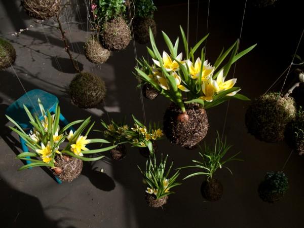 Fedor Van der Valk -- string-gardens-10-600x450