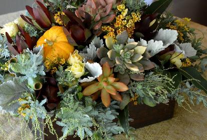 DIY- Succulent Perch