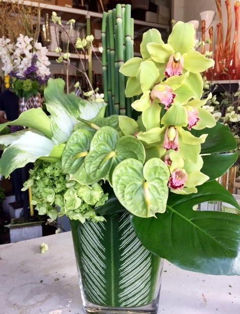L.A. Botanicals. monochromatic green