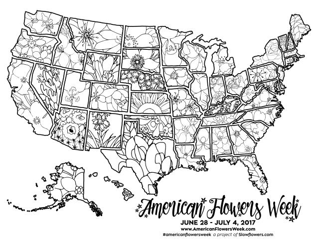state flower map. jenny diaz