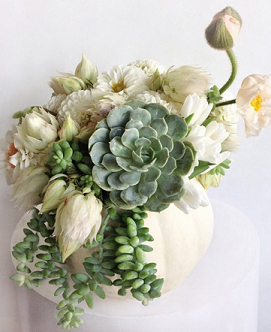 floral art. white pumpkin