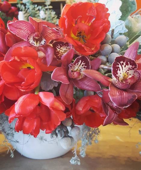 labellum. tulips. cymbids