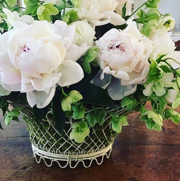 sag harbor. white peonies and green hellebores