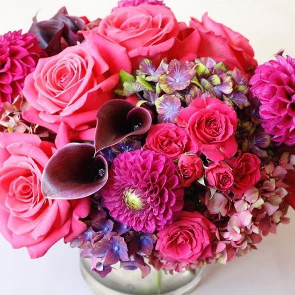 lilla_bello. hot pink